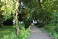 Острозький парк- травень.jpg