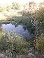 Природа Алматы 17.jpg