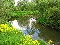 Река Стрелка в поселке Новополье.jpg