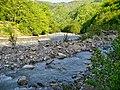Сочинский национальный парк. Река Бекишей (левый приток реки Аше) у водопада Псыдах.jpg