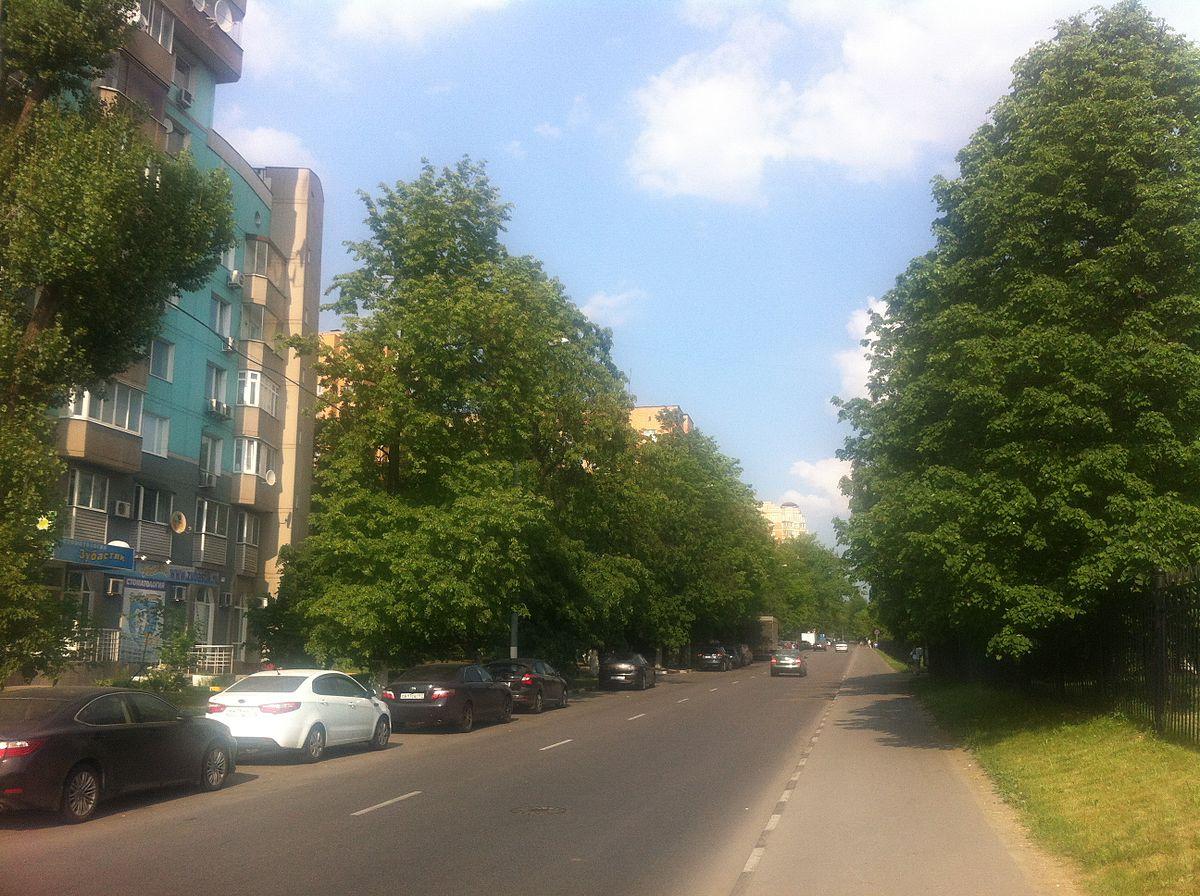 Справка от гастроэнтеролога Улица Шкулёва бассейн благовест справка от