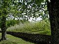 У садибі Кочубея.jpg