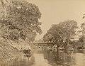 ആലപ്പുഴയിലെ ഒരു കനാൽ (1900).jpg