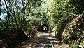メイプル耶馬サイクリングロード - panoramio - Yobito KAYANUMA (16).jpg