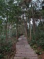 卧龙山路 - Wolong Mountain Path - 2015.12 - panoramio.jpg