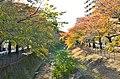多摩センター・乞田川 - panoramio.jpg