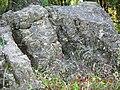 寿县八公山国家森林公园景色 - panoramio (25).jpg