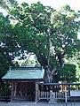 潮崎本之宮神社 東牟婁郡串本町にて Shiozaki-motonomiya-jinja 2014.8.20 - panoramio (2).jpg