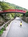 瀧安寺の紅橋に向けて - panoramio.jpg