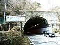 鷹ノ巣山トンネル - panoramio.jpg