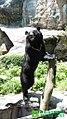 黑糖站在李安壁畫前.jpg