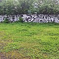 -warszawa, pola mokotowskie (te dzikie!) (14170922908).jpg