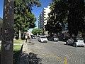 12-09-2017 Avenida da República, Faro (2).JPG