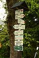 14-05-04-Střední-Smržovka v Jizerské hory-RalfR-25.jpg
