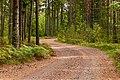 18-08-25-Åland RRK6589.jpg