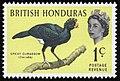 1962 1 cent stamp British Honduras.jpg