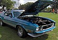 1973 Ford Mustang.JPG