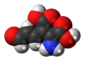 2-Amino-3-carboxymuconic-semialdehyde-3D-spacefill.png