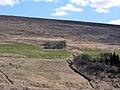 2005-05-28 11 42 39 Iceland-Einarsstaðir.JPG