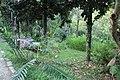 2010 07 17130 5809 Beinan Township, Taiwan, Jhihben National Forest Recreation Area, Walking paths.JPG