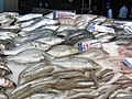 2011 fish Spinneys HyperMarket grocery Cairo 5384777516.jpg