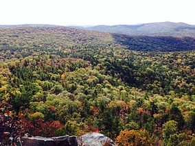 20131102 Flatside Wilderness 01.jpg