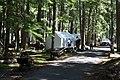 2013 Longmire Campground Opening 17 (9011697866).jpg