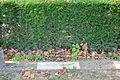 2015-09-16 GuentherZ Wien11 Zentralfriedhof Russischer Heldenfriedhof (055).JPG