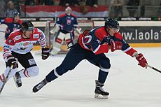 20150207 1816 Ice Hockey AUT SVK 9750.jpg