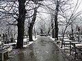 26. Bucuresti, Romania. Din Ciclul BUCURESTIUL SUB ASEDIUL FRIGULUI, Ianuarie 2019. Cimitirul Bellu Catolic. (4).jpg