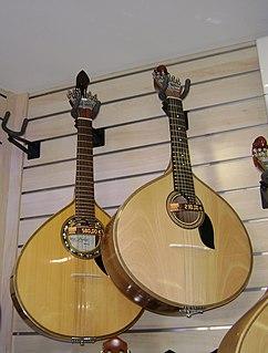 plucked string instrument with twelve steel strings