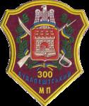 300 МП.png
