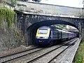 43070 Paddington to Bristol Temple Meads at Sidney Gardens Bath (14693998497).jpg
