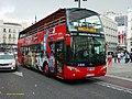 4585 ALSA - Flickr - antoniovera1.jpg