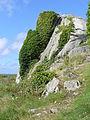 4665.Das Felsenmeer rings um das Pointe du Château - Côte de Granit Rose - commune Plougrescant ,Departement Côtes-d'Armor , Region Bretagne - Spaziergang - Steffen Heilfort.JPG