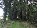 49849 Wilsum, Germany - panoramio - Roland Meijerink (12).jpg