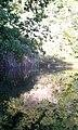 5. Ділянка Шотландії (Мала Швейцарія), (парк «Софіївка»), Умань.jpg