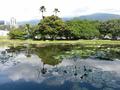 6.Caracas botanical garden jardin botanico ucv venezuela.png