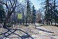 74-101-5008 Chernihiv Misky Sad DSC 7964.jpg