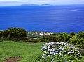 Açores 2010-07-19 (5055069570).jpg