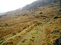 A Track Leading up a Misty Glen Gyle - geograph.org.uk - 687906.jpg