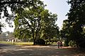 Acharya Jagadish Chandra Bose Indian Botanic Garden - Howrah 2011-01-08 9822.JPG