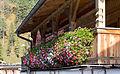 Achenkirch - Urlaub 2013 - Balkon mit Geranien Seealm 001.jpg