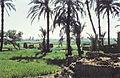 Aegypten1959-087 hg.jpg