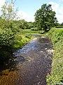 Afon Einion - geograph.org.uk - 490674.jpg