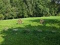 Aizkraukle, Aizkraukles pilsēta, Latvia - panoramio.jpg