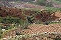 Al Ardha Sub-District, Jordan - panoramio.jpg