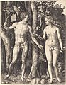 Albrecht Dürer - Adam and Eve (NGA 1949.1.18).jpg