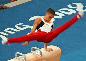 Alexander Artemev - Artemev competing in pommel horse at the 2008 Olympics