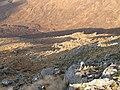 Allt a' Choire Reidh from the west ridge of Buidhe Bheinn - geograph.org.uk - 653566.jpg